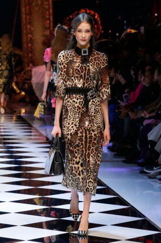 Animalier / Dolce&Gabbana
