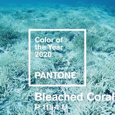colore dell'anno 2019, pantone, bleached coral, living coral,