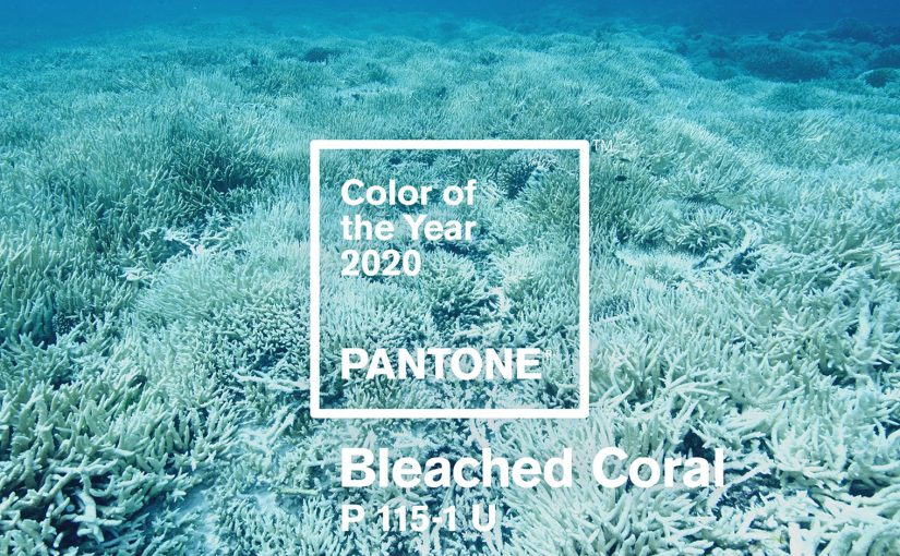 colore dell'anno 2019, pantone, bleached coral, living coral,