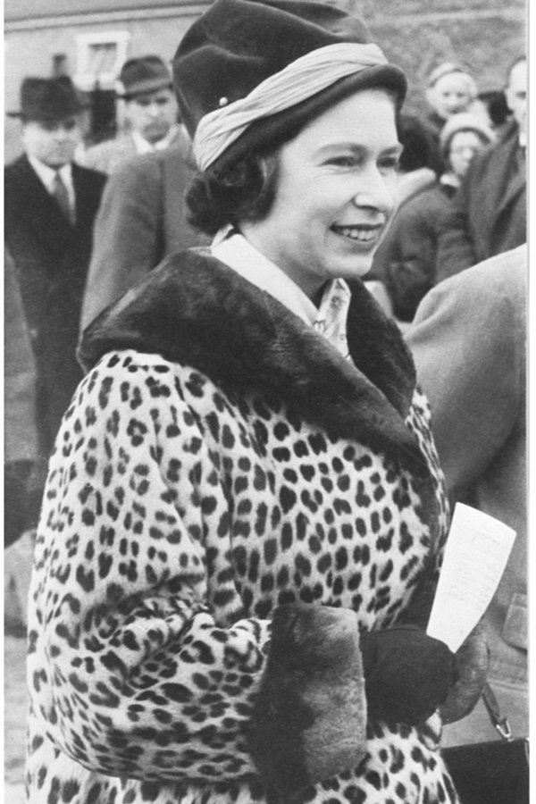 regina elisabetta II, animalier