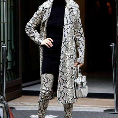 Celine Dion / 2017